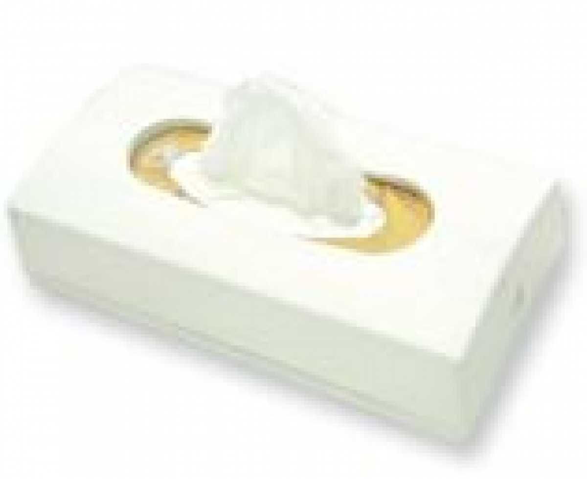 ABS Plastik Dikdörtgen Kağıt Mendil Dispenseri, Beyaz
